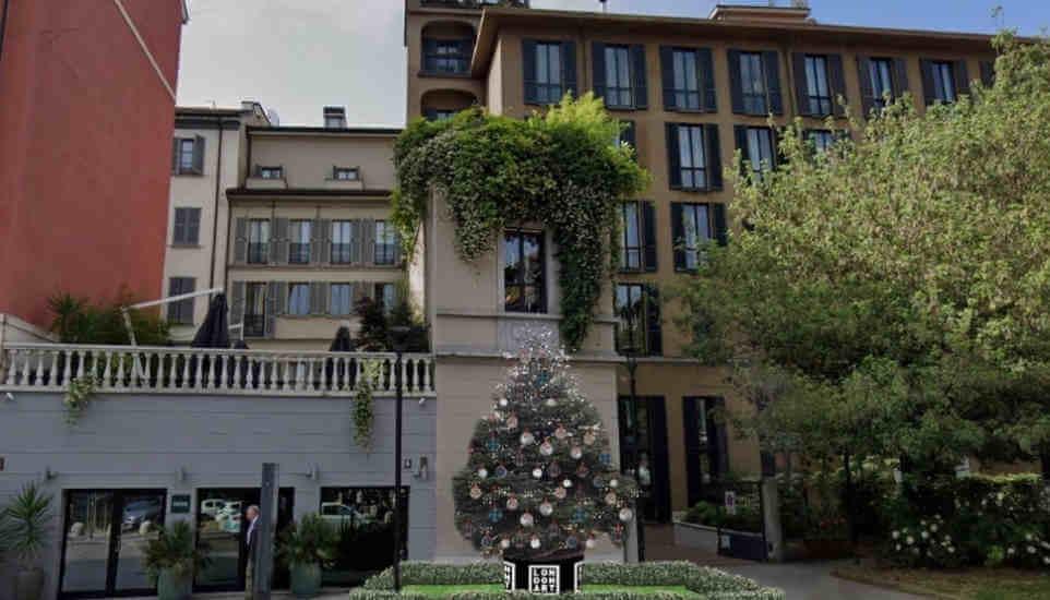 The Wallaper Tree - Londonart